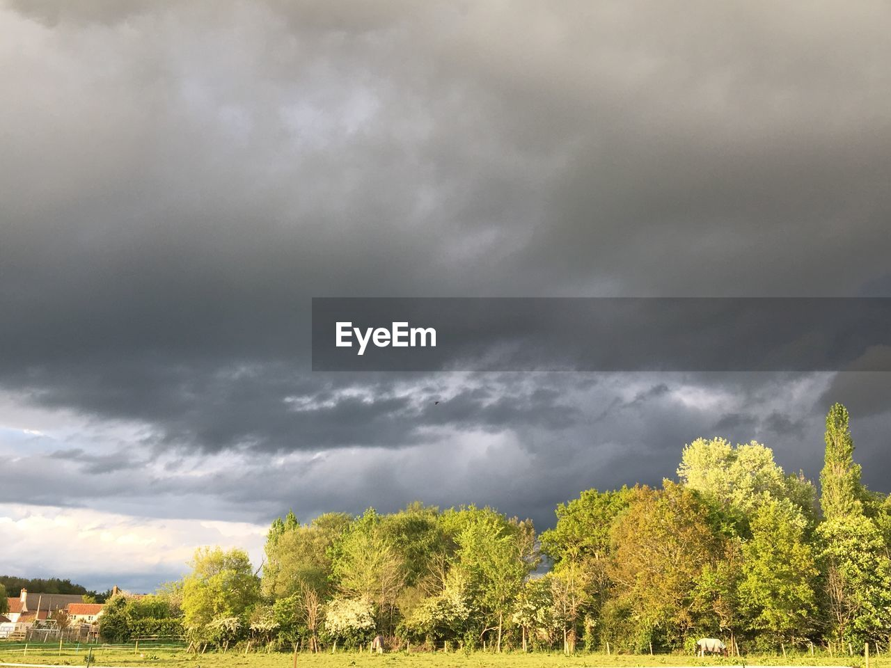 cloud - sky, sky, plant, tree, beauty in nature, nature, storm, storm cloud, overcast, no people, scenics - nature, day, growth, tranquil scene, outdoors, non-urban scene, tranquility, thunderstorm, green color, ominous