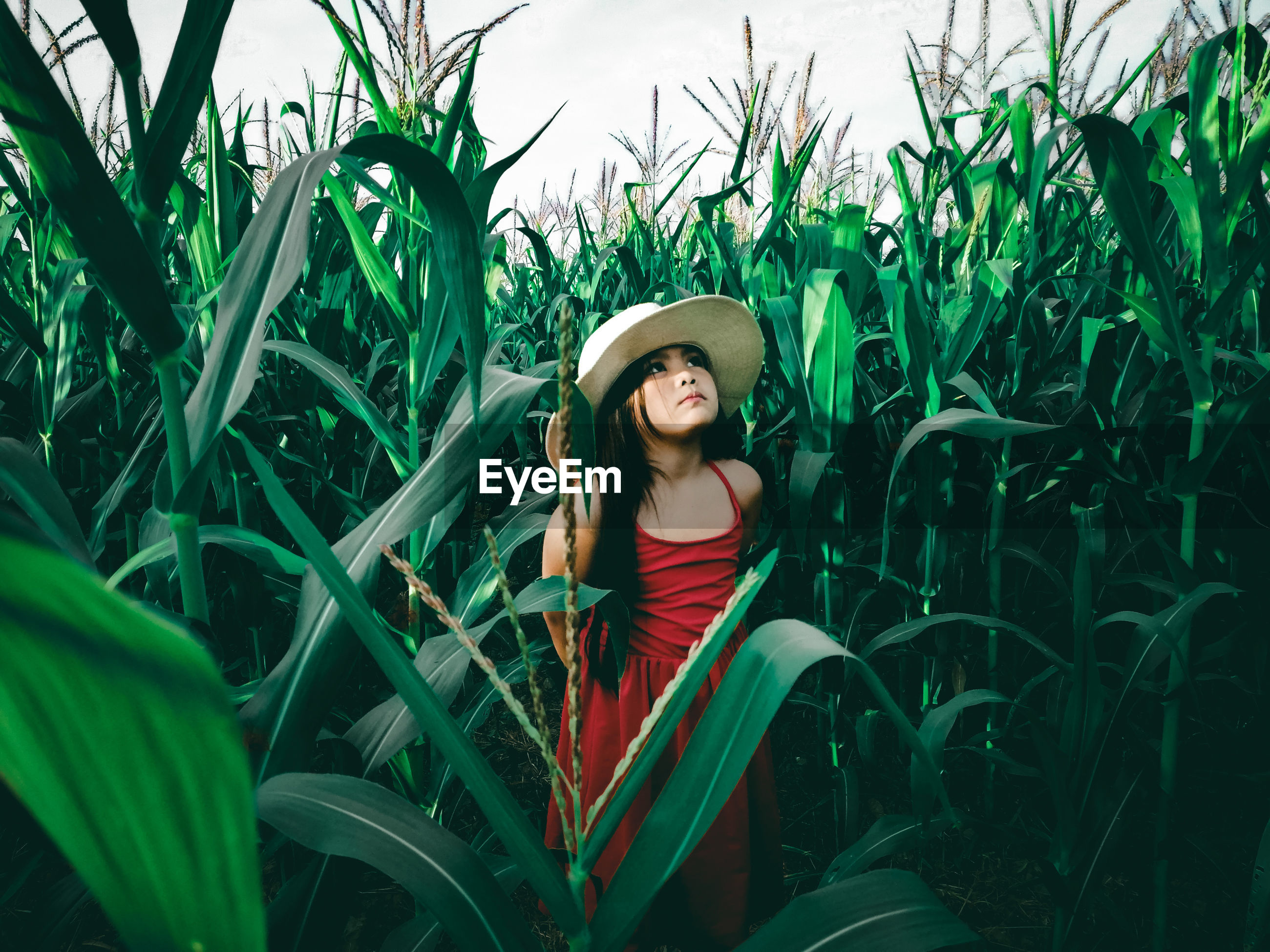 PORTRAIT OF YOUNG WOMAN WEARING HAT STANDING ON FIELD