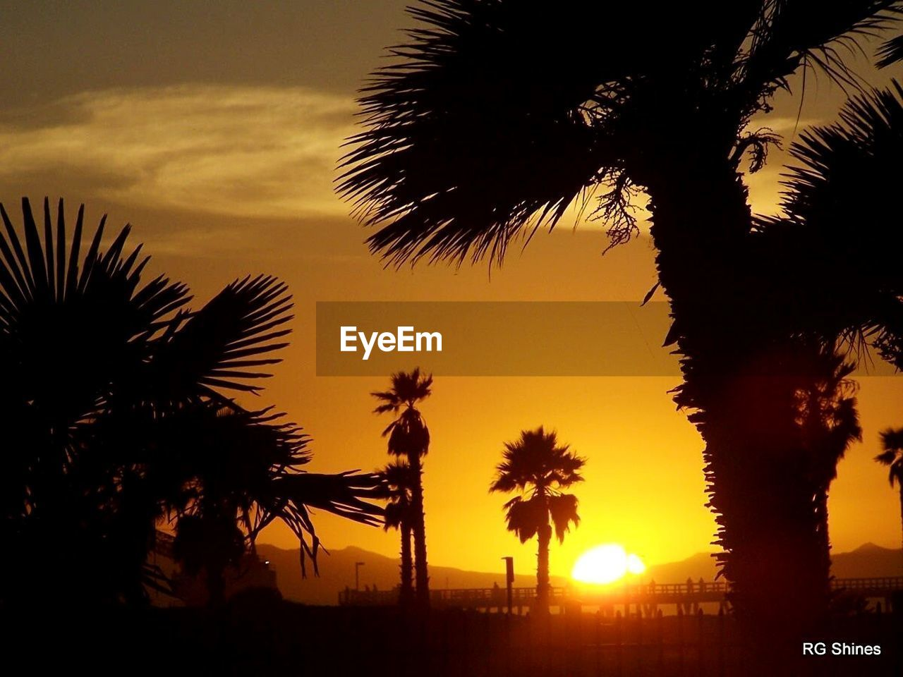 palm tree, sunset, tree, silhouette, sky, beauty in nature, scenics, orange color, nature, sun, growth, no people, palm frond, tranquility, tranquil scene, sea, outdoors, tree trunk, low angle view, beach, vacations, day