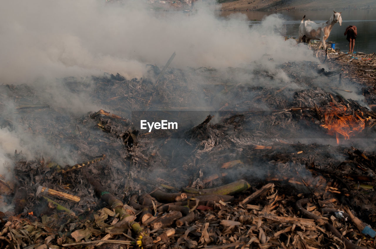 smoke - physical structure, burning, fire - natural phenomenon, fire, heat - temperature, pollution, nature, environmental issues, environment, flame, land, day, environmental damage, air pollution, forest fire, outdoors, destruction, accidents and disasters, bonfire, sign, power in nature, campfire