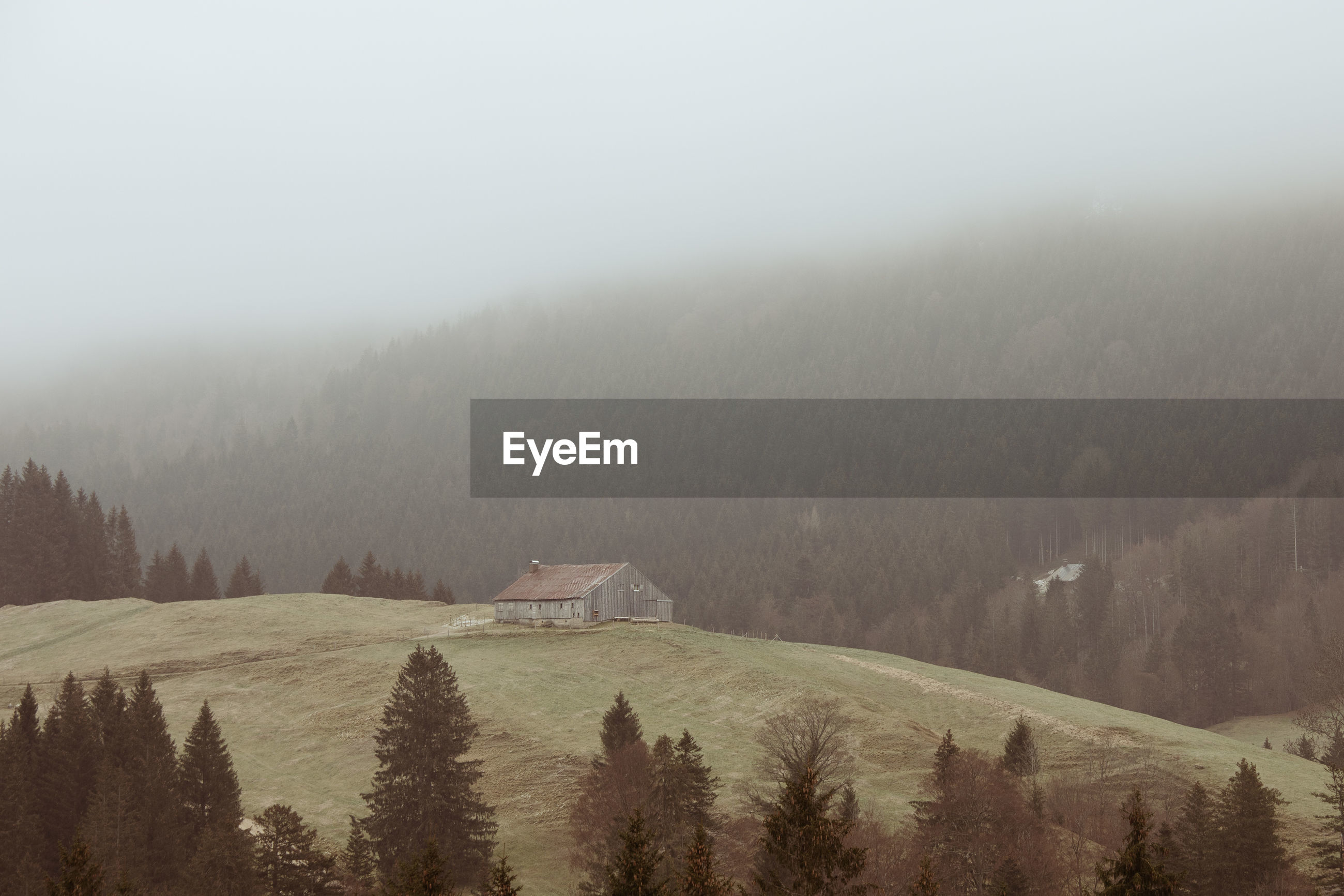 Wooden cabin on misty morning