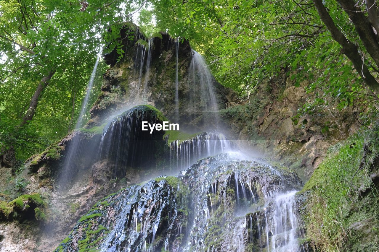 tree, waterfall, scenics - nature, beauty in nature, motion, plant, long exposure, forest, water, land, flowing water, blurred motion, environment, rock, nature, no people, rock - object, solid, non-urban scene, rainforest, outdoors, power in nature, flowing, falling water
