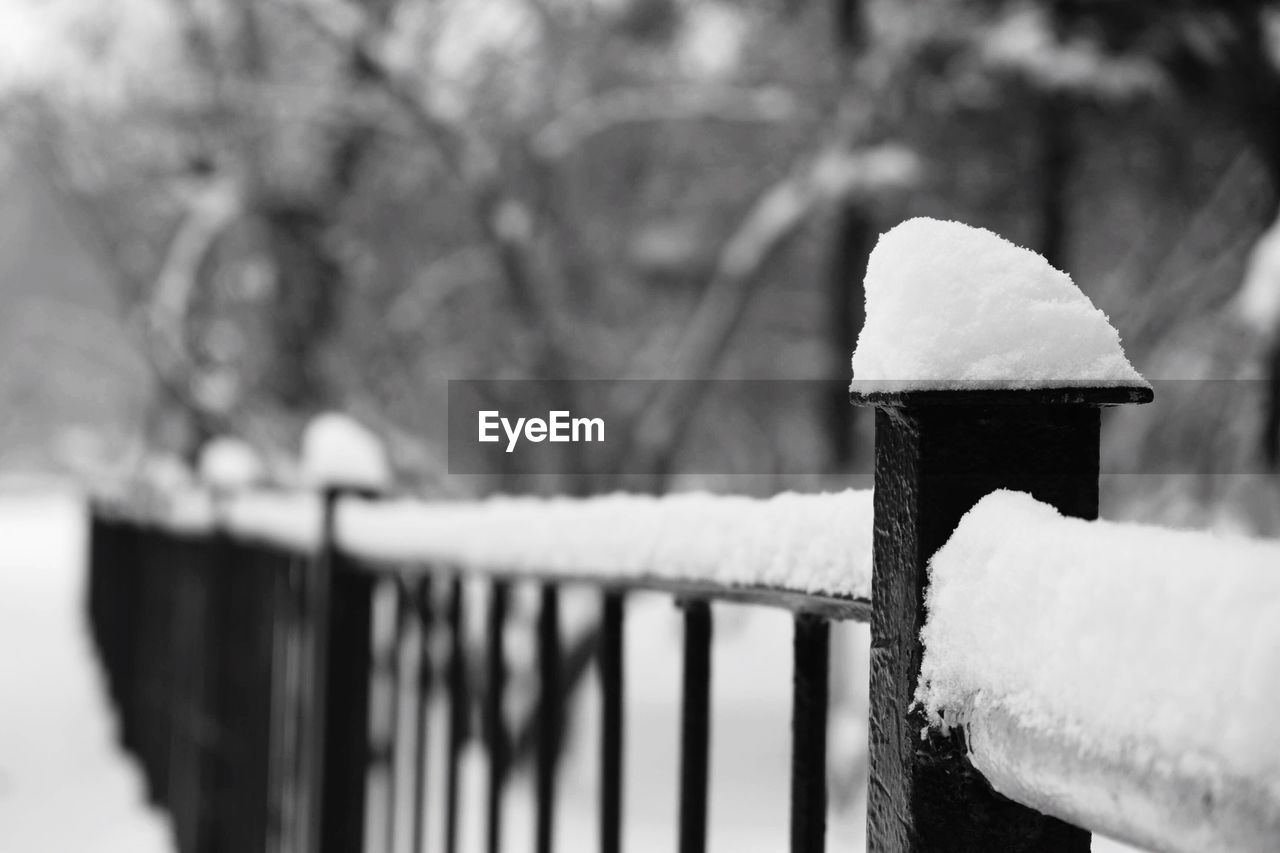 winter, snow, cold temperature, focus on foreground, railing, white color, outdoors, day, no people, close-up, nature, tree