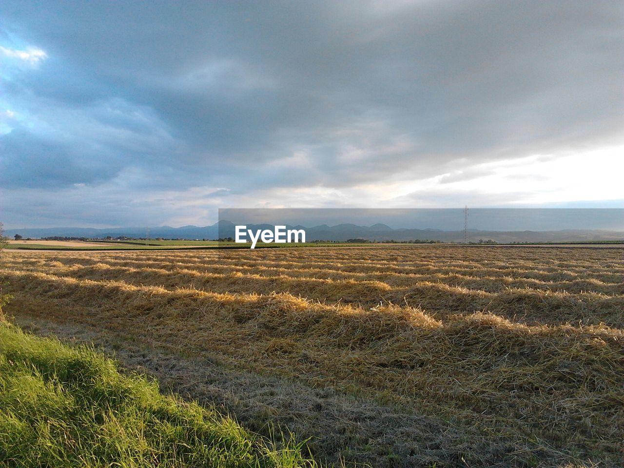 Farm against sky