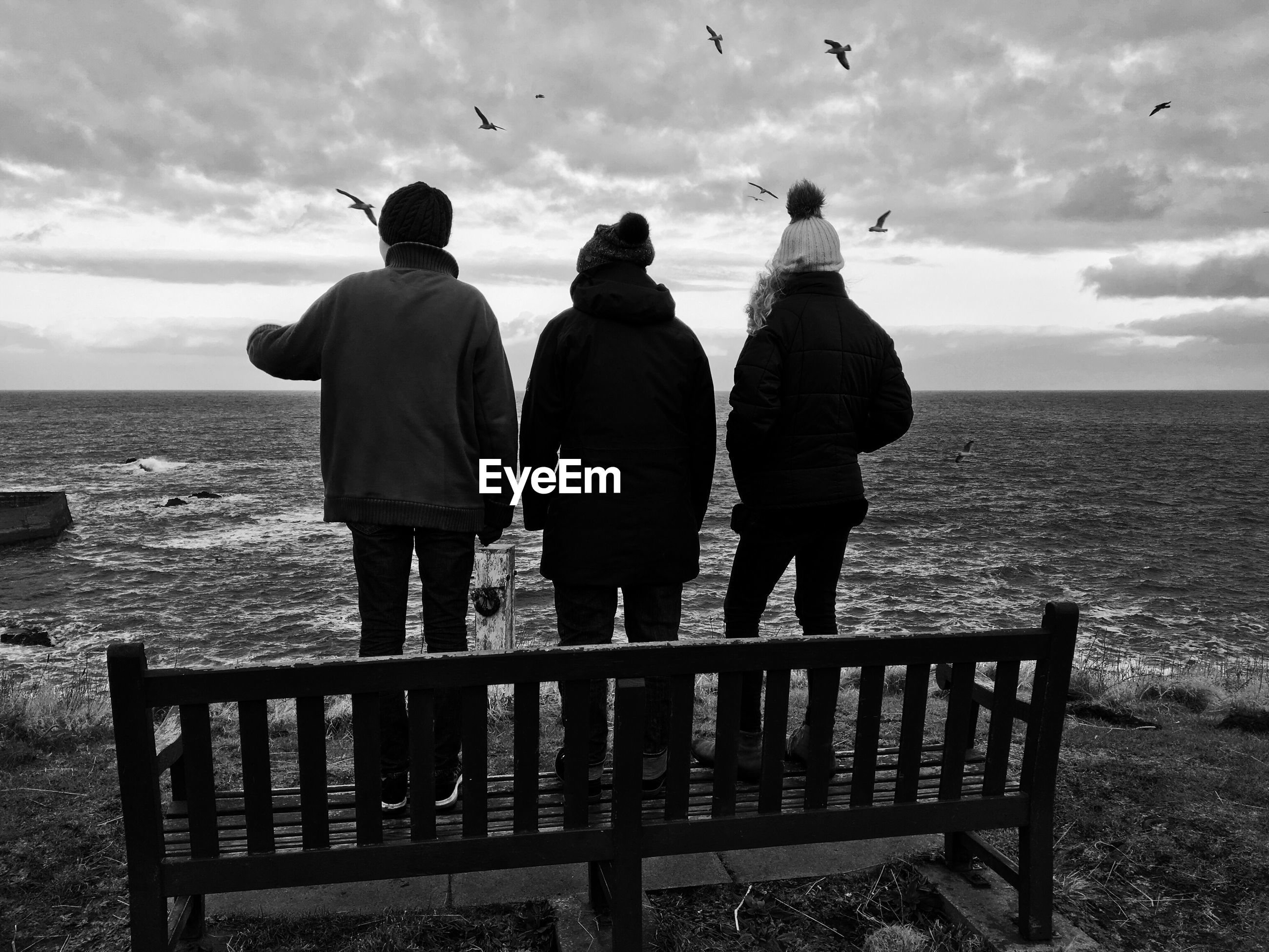 Rear view of friends standing on bench against sea at beach