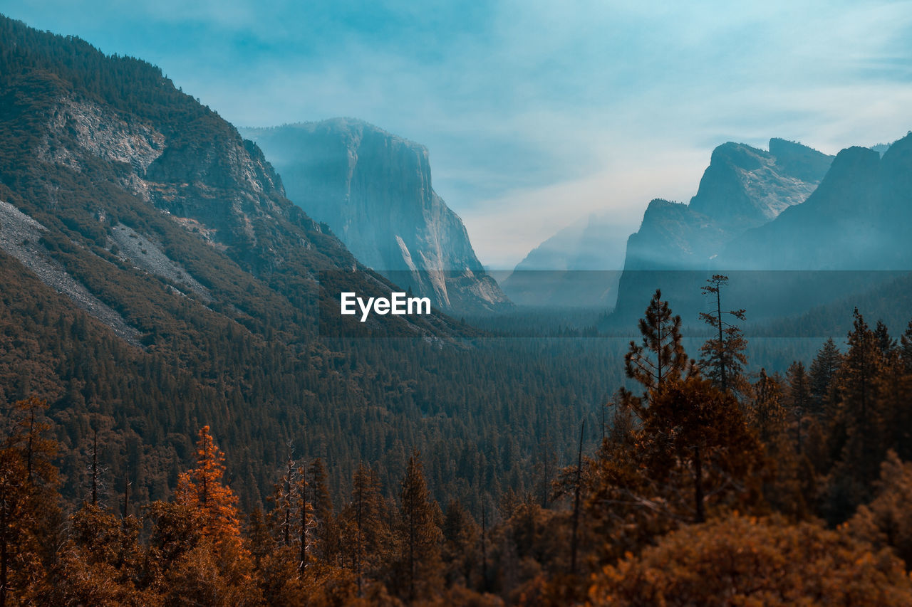 mountain, nature, beauty in nature, tree, tranquil scene, sky, scenics, landscape, forest, outdoors, day, no people, scenery, range