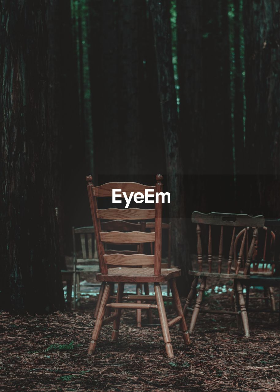 EMPTY CHAIRS IN FOREST
