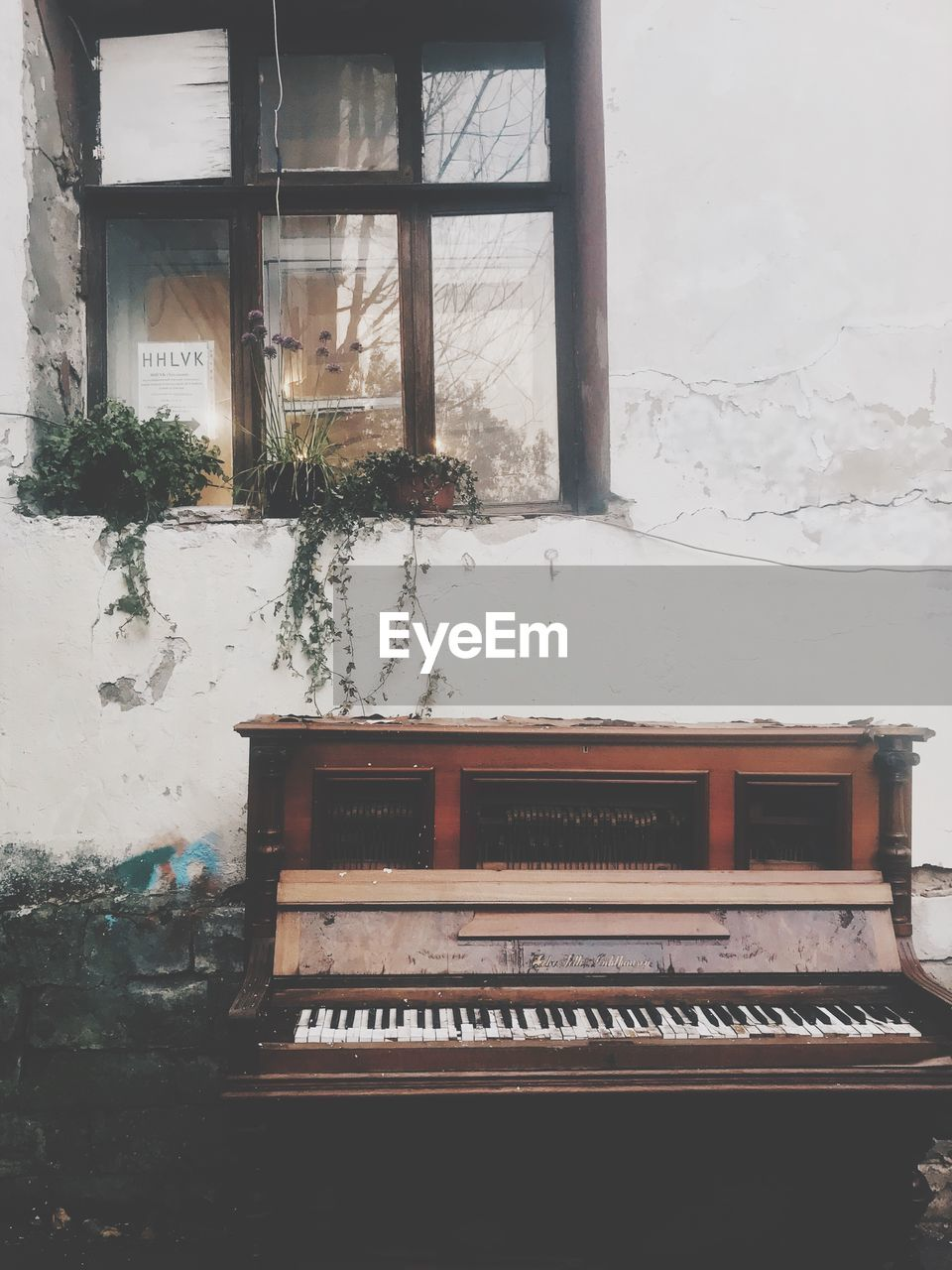 window, musical equipment, piano, musical instrument, no people, music, indoors, day, old, architecture, glass - material, nature, built structure, arts culture and entertainment, wood - material, plant, text, communication, building, piano key, keyboard instrument