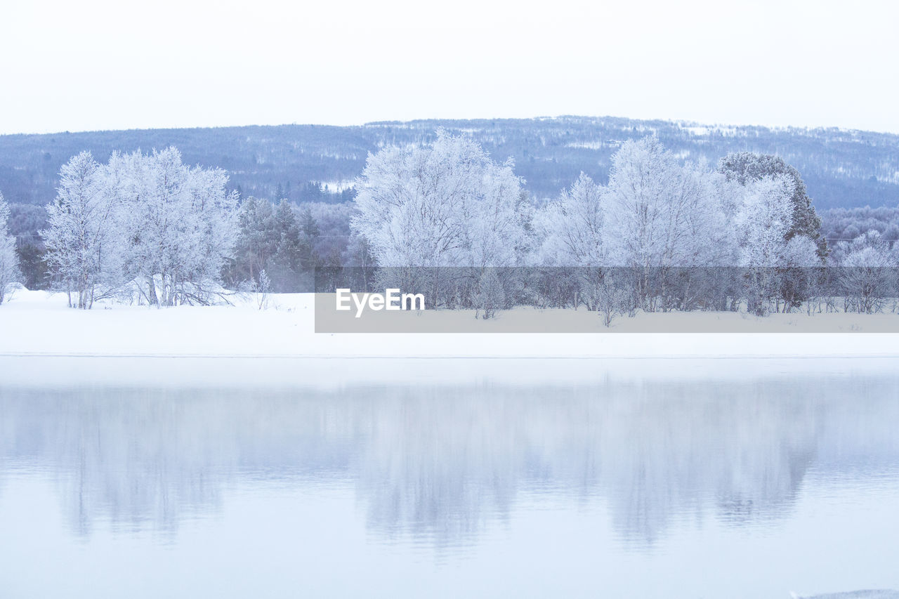 tree, winter, scenics - nature, cold temperature, tranquil scene, tranquility, beauty in nature, lake, plant, water, snow, nature, waterfront, no people, day, sky, non-urban scene, environment, outdoors