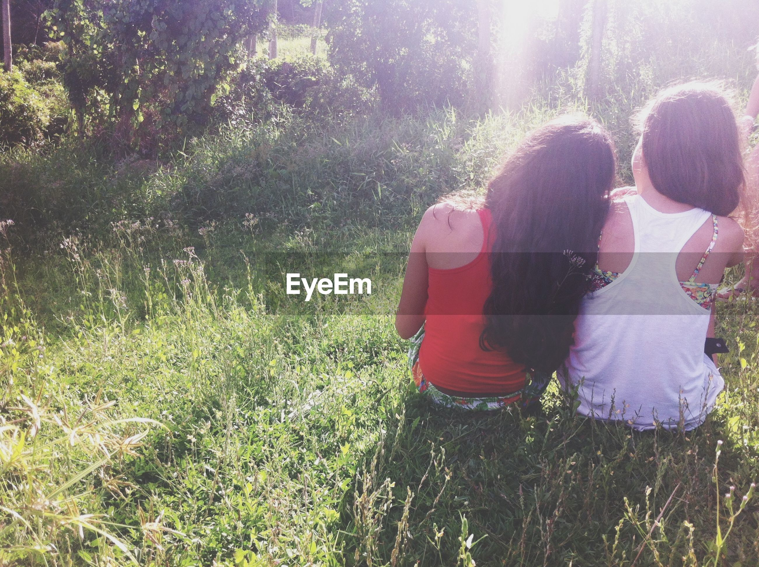 lifestyles, leisure activity, rear view, casual clothing, standing, person, grass, tree, sunlight, field, full length, plant, growth, men, nature, three quarter length, girls, outdoors