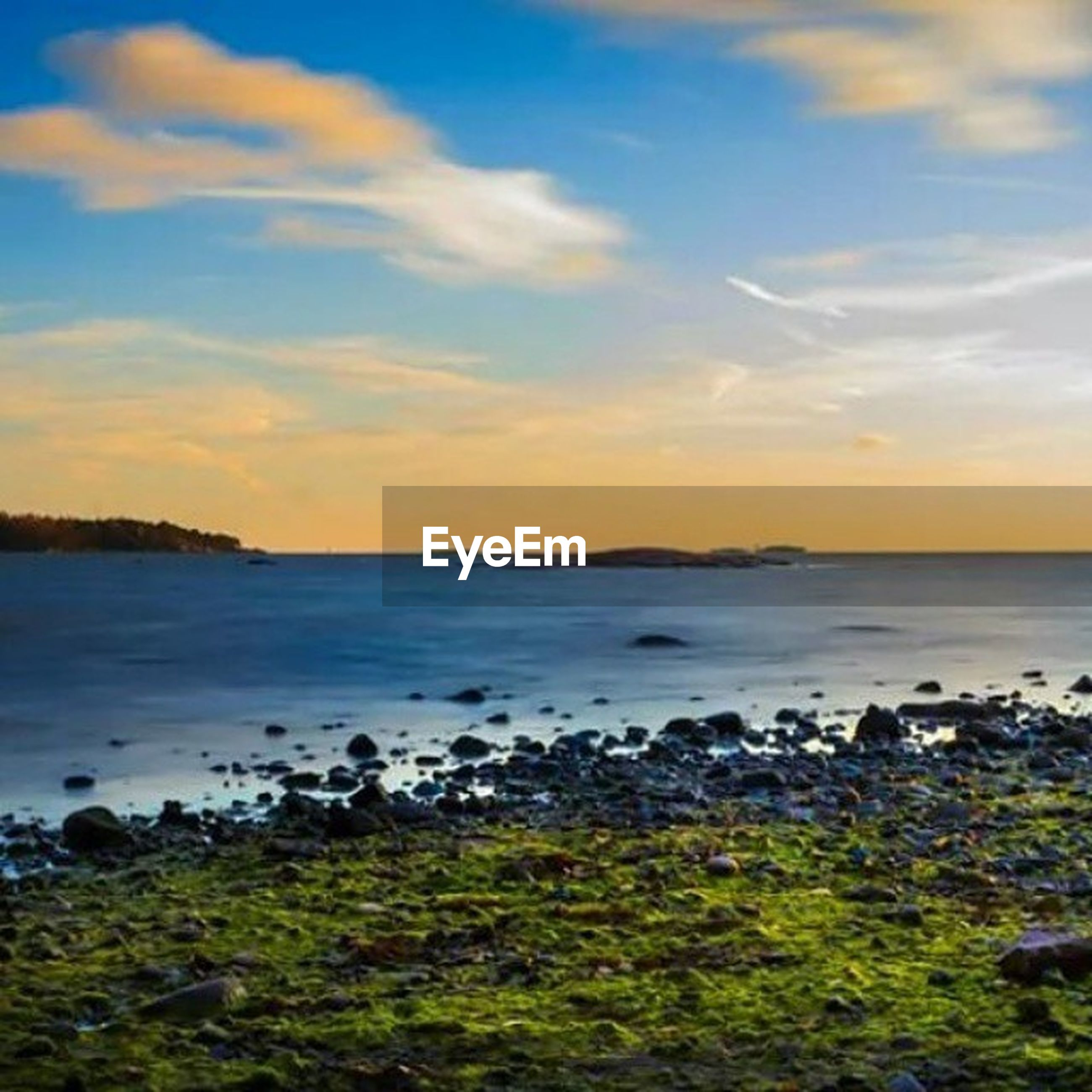 cloud - sky, nature, sky, sunset, sea, scenics, large group of animals, animals in the wild, animal wildlife, no people, animal themes, outdoors, water, horizon over water, travel destinations, beauty in nature, bird, day