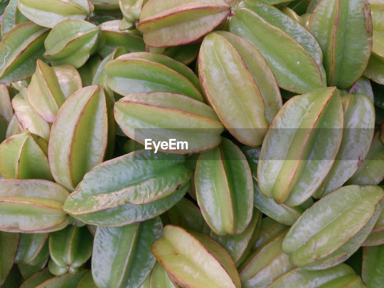 Full Frame Shot Of Starfruit