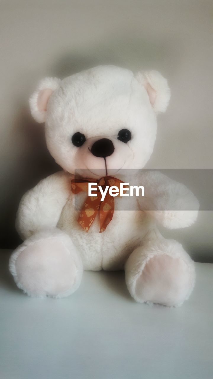 white color, stuffed toy, animal representation, toy, indoors, close-up, no people, teddy bear, childhood, animal themes, day