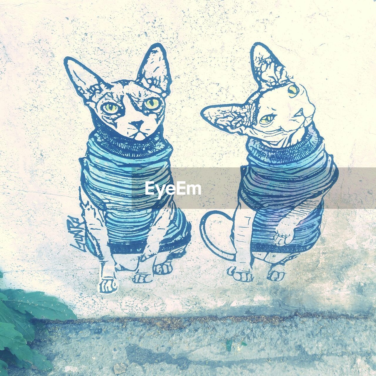 art and craft, creativity, representation, no people, high angle view, day, drawing - art product, wall - building feature, mammal, outdoors, pattern, winter, nature, craft, cat, mural