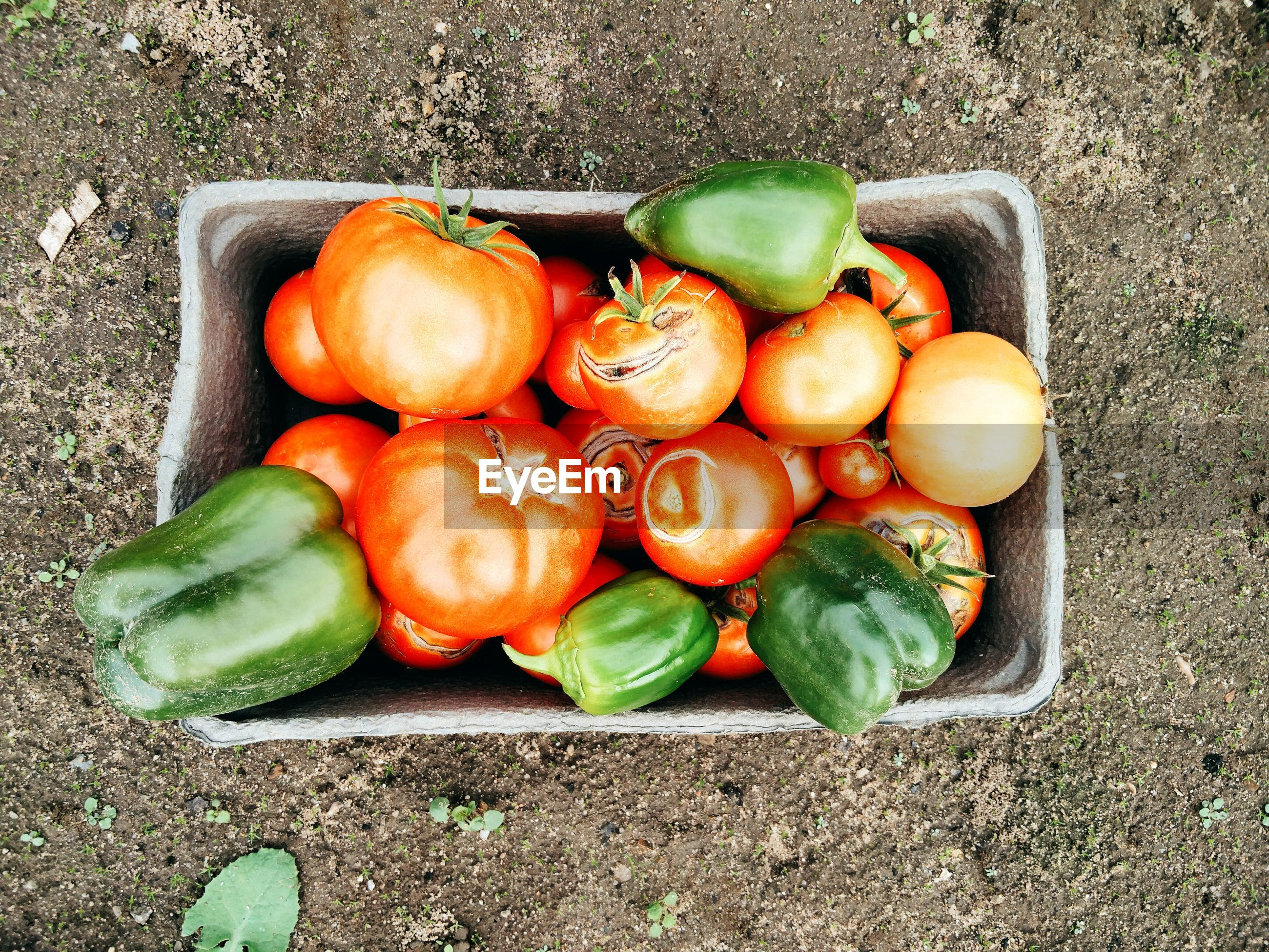 Directly above view of bell peppers in container