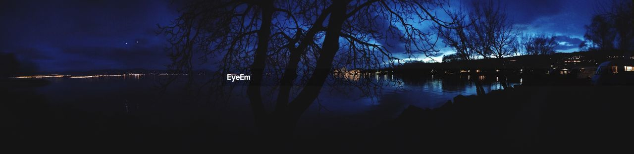 water, night, tree, reflection, illuminated, lake, no people, plant, sky, tranquility, nature, tranquil scene, silhouette, beauty in nature, bare tree, scenics - nature, outdoors, dark, branch
