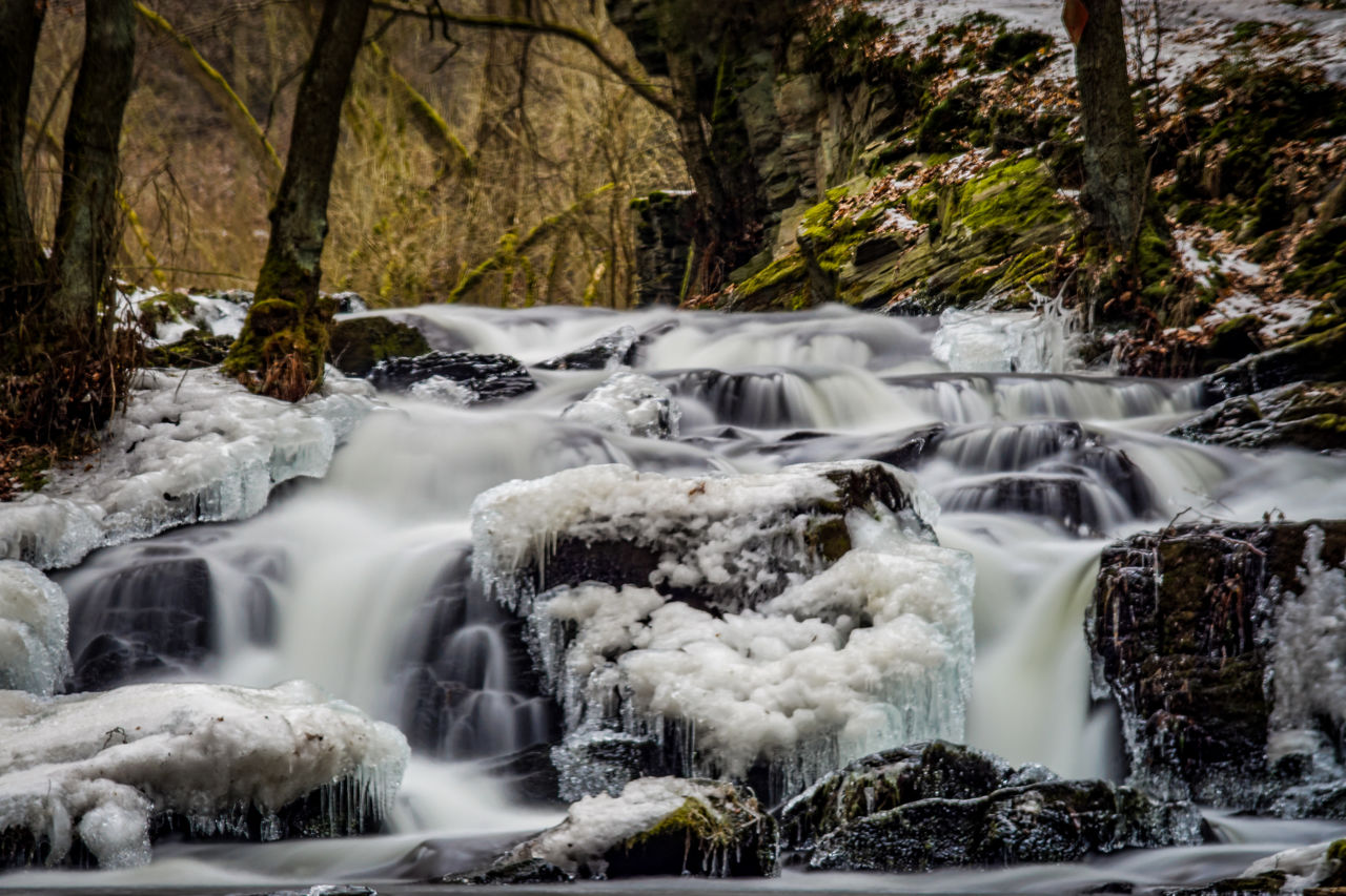 long exposure, tree, waterfall, flowing water, scenics - nature, motion, forest, beauty in nature, water, blurred motion, nature, no people, plant, day, land, rock, flowing, solid, rock - object, outdoors, stream - flowing water, power in nature, falling water, rainforest