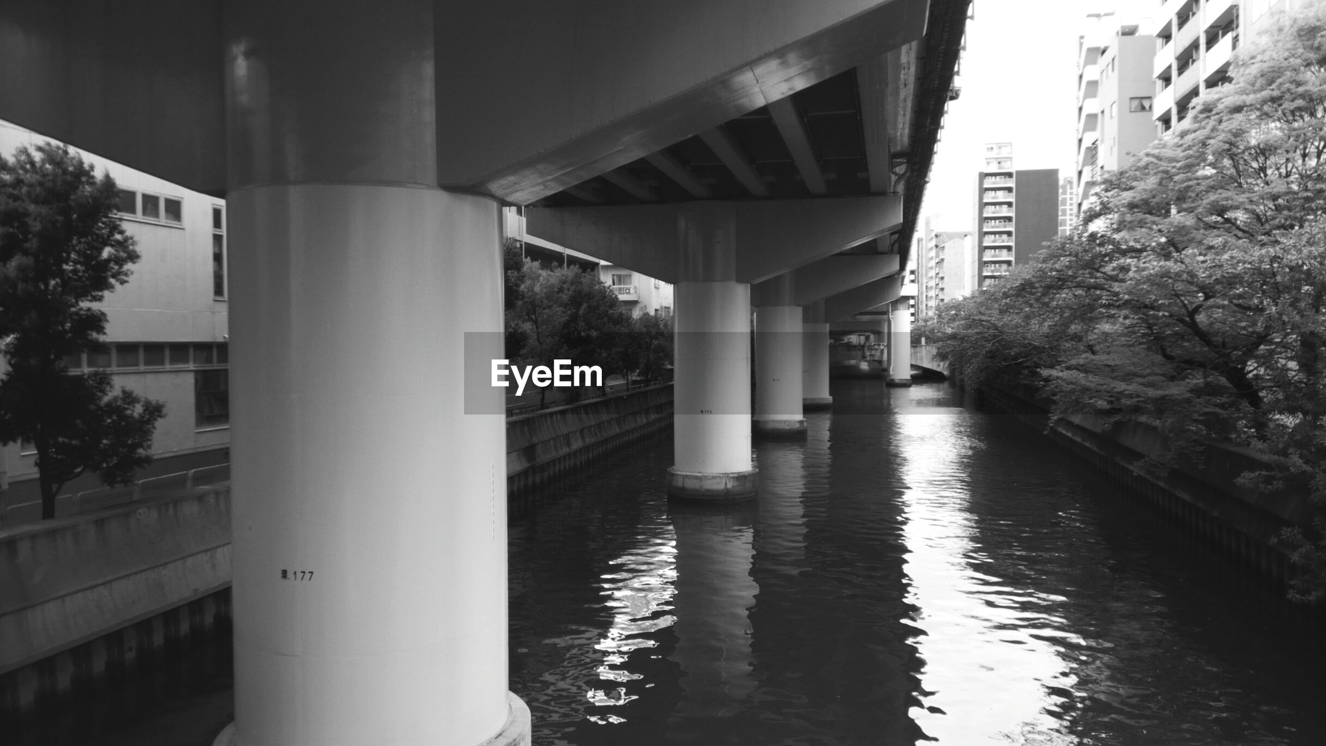 architecture, built structure, bridge, water, connection, bridge - man made structure, architectural column, river, waterfront, no people, transportation, nature, building exterior, day, reflection, outdoors, below, building, underneath
