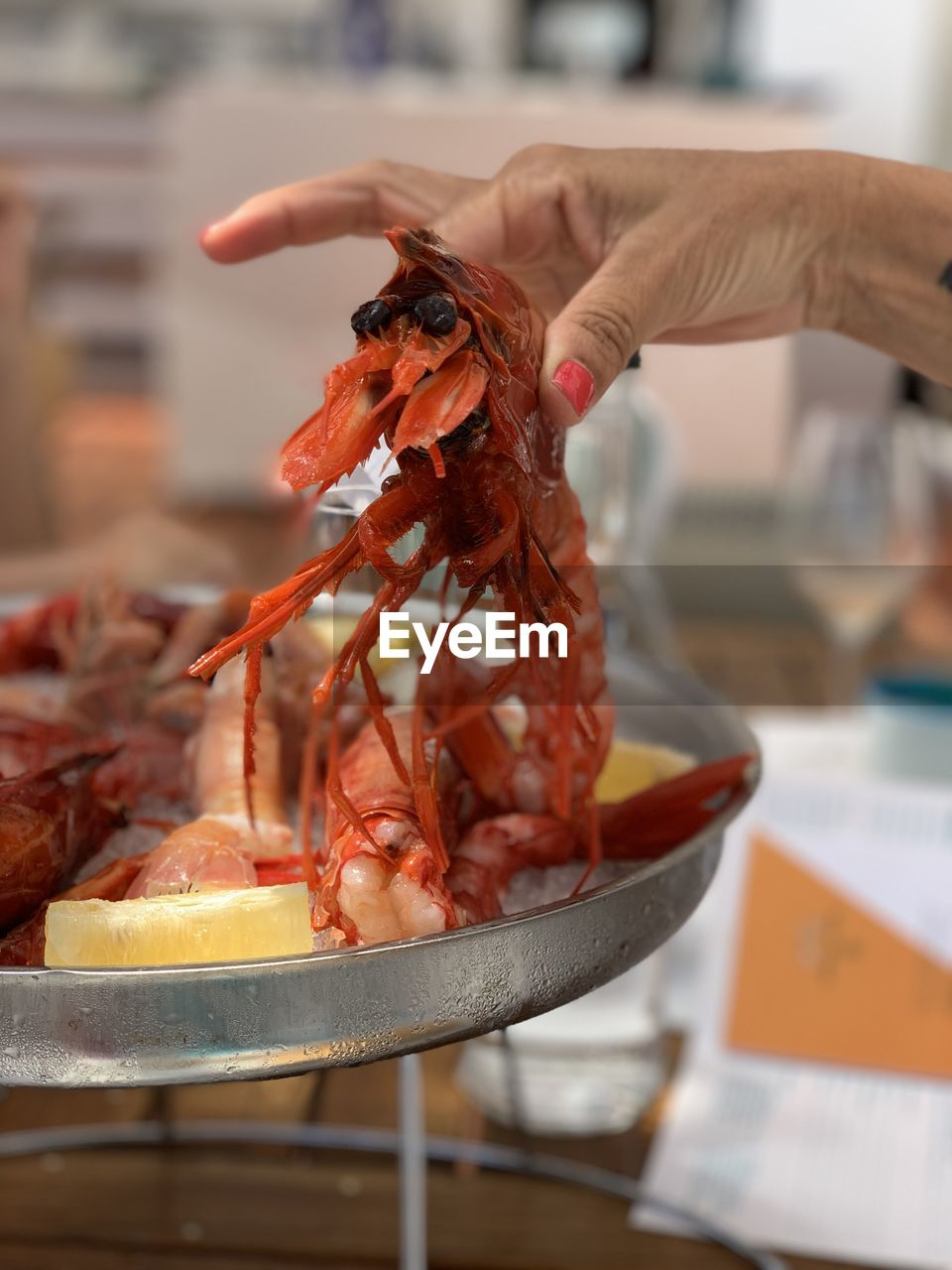 food and drink, food, human hand, freshness, real people, one person, hand, human body part, focus on foreground, seafood, crustacean, holding, indoors, close-up, healthy eating, wellbeing, body part, unrecognizable person, finger, preparation, lobster, preparing food