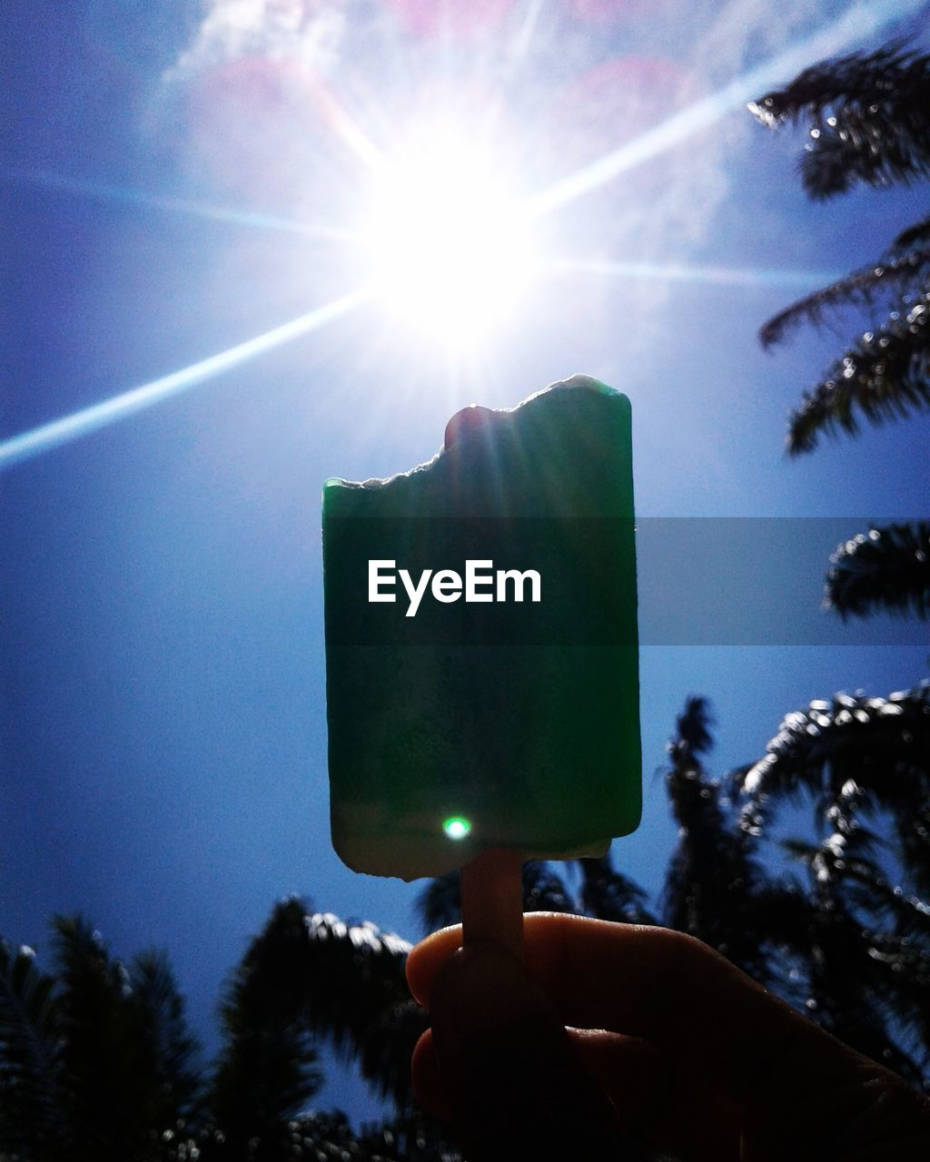 human hand, human body part, holding, tree, real people, one person, human finger, lens flare, sky, sunbeam, sunlight, sun, personal perspective, low angle view, outdoors, silhouette, lifestyles, leisure activity, day, blue, men, women, clear sky, close-up, people