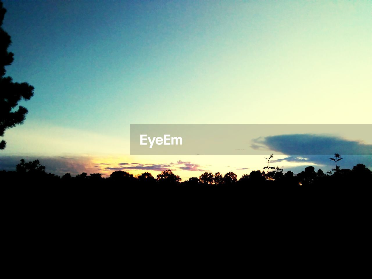 silhouette, sunset, beauty in nature, nature, tree, sky, tranquil scene, tranquility, scenics, no people, outdoors, landscape, clear sky, day