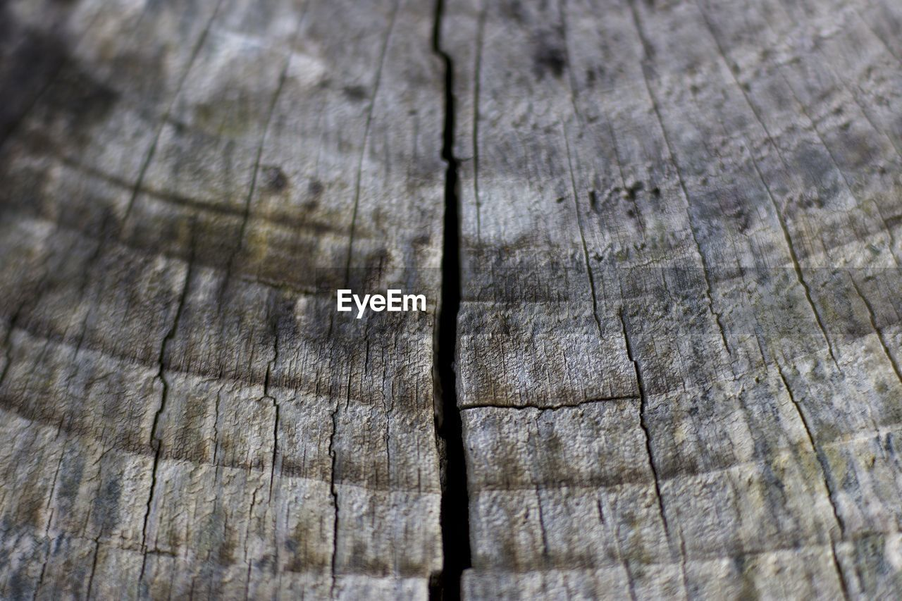wood - material, textured, backgrounds, pattern, wood grain, tree ring, close-up, timber, nature, no people, cracked, full frame, rough, abstract, brown, hardwood, tree stump, tree, outdoors, rustic, day