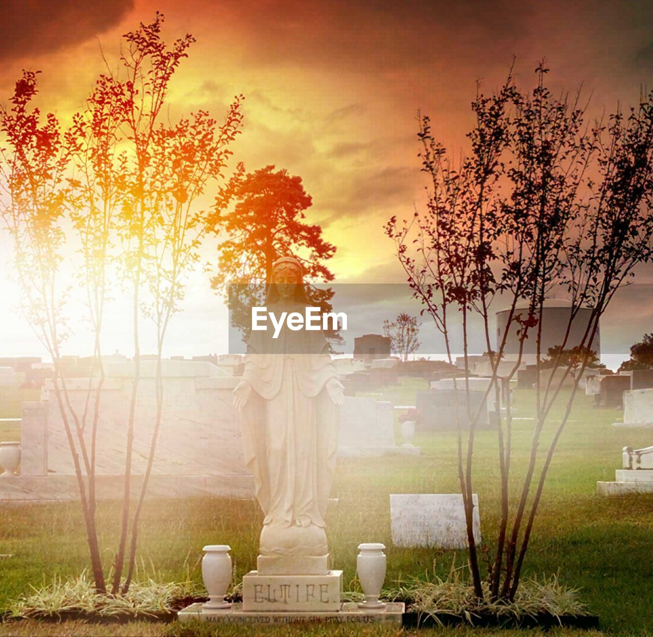 tree, no people, statue, sky, sculpture, grass, sunset, nature, outdoors, day