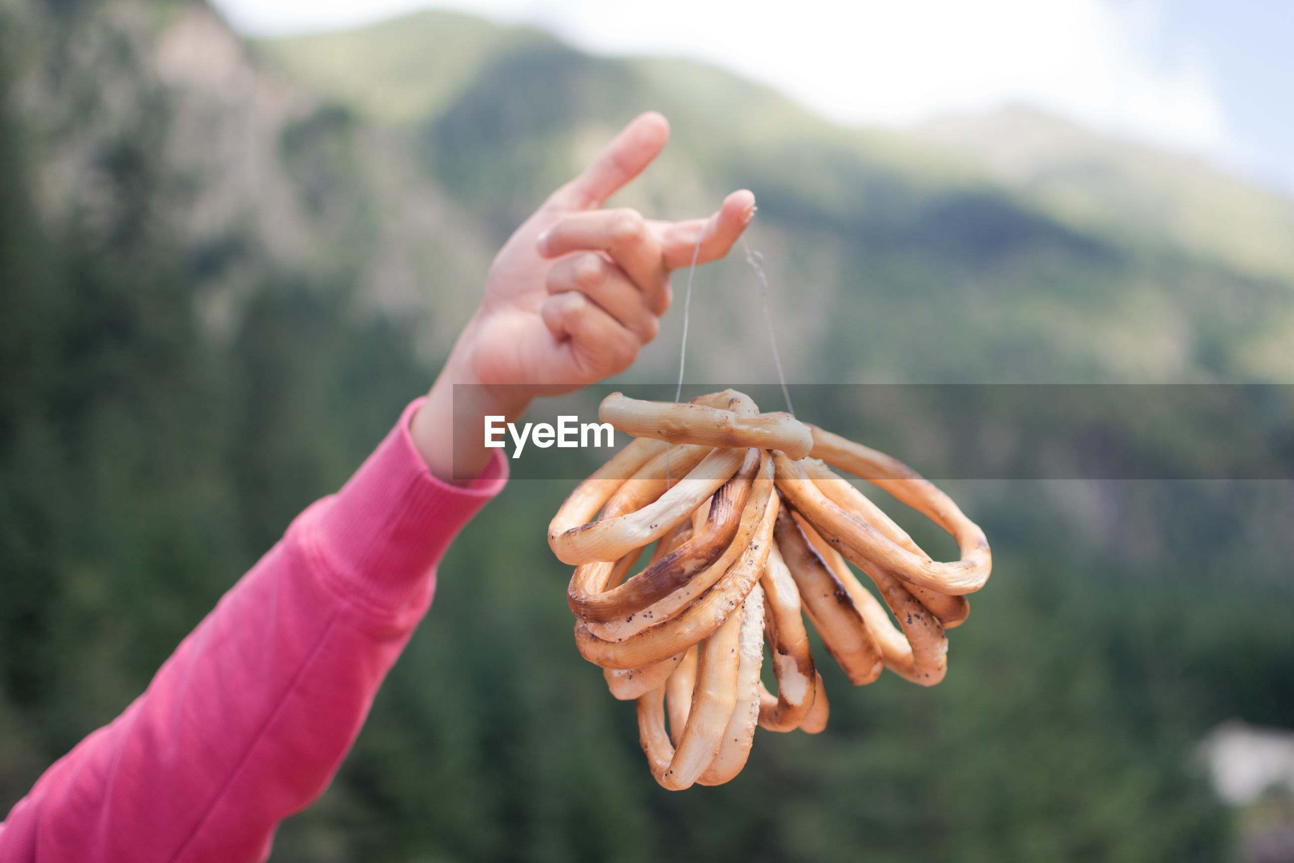 Cropped woman hand holding food against mountains