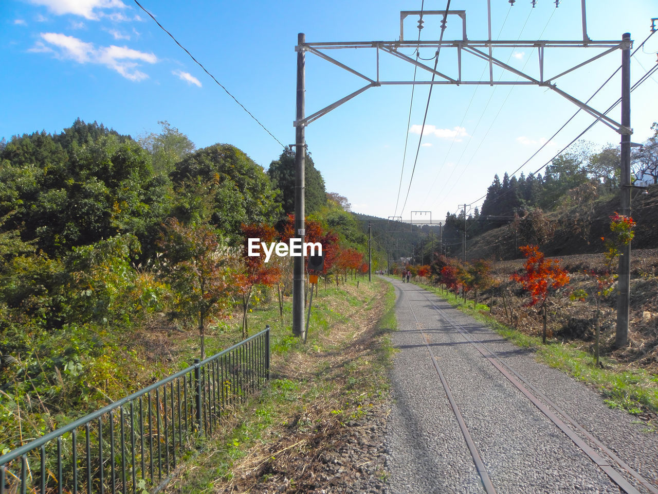 Railroad track by trees against sky