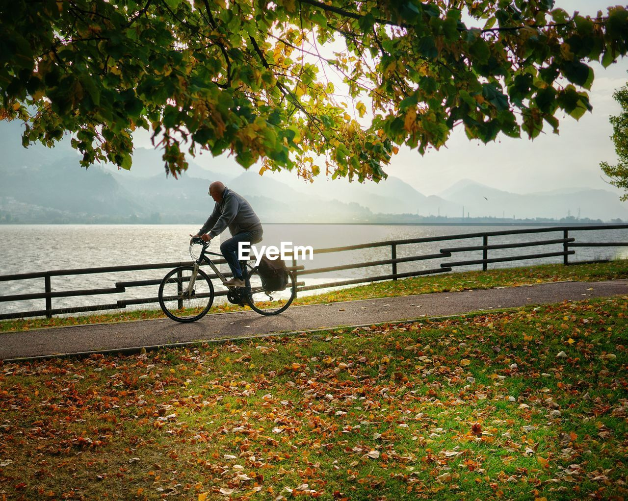transportation, bicycle, plant, real people, land vehicle, riding, tree, ride, one person, activity, nature, cycling, lifestyles, leisure activity, mode of transportation, full length, beauty in nature, day, sport, outdoors, change