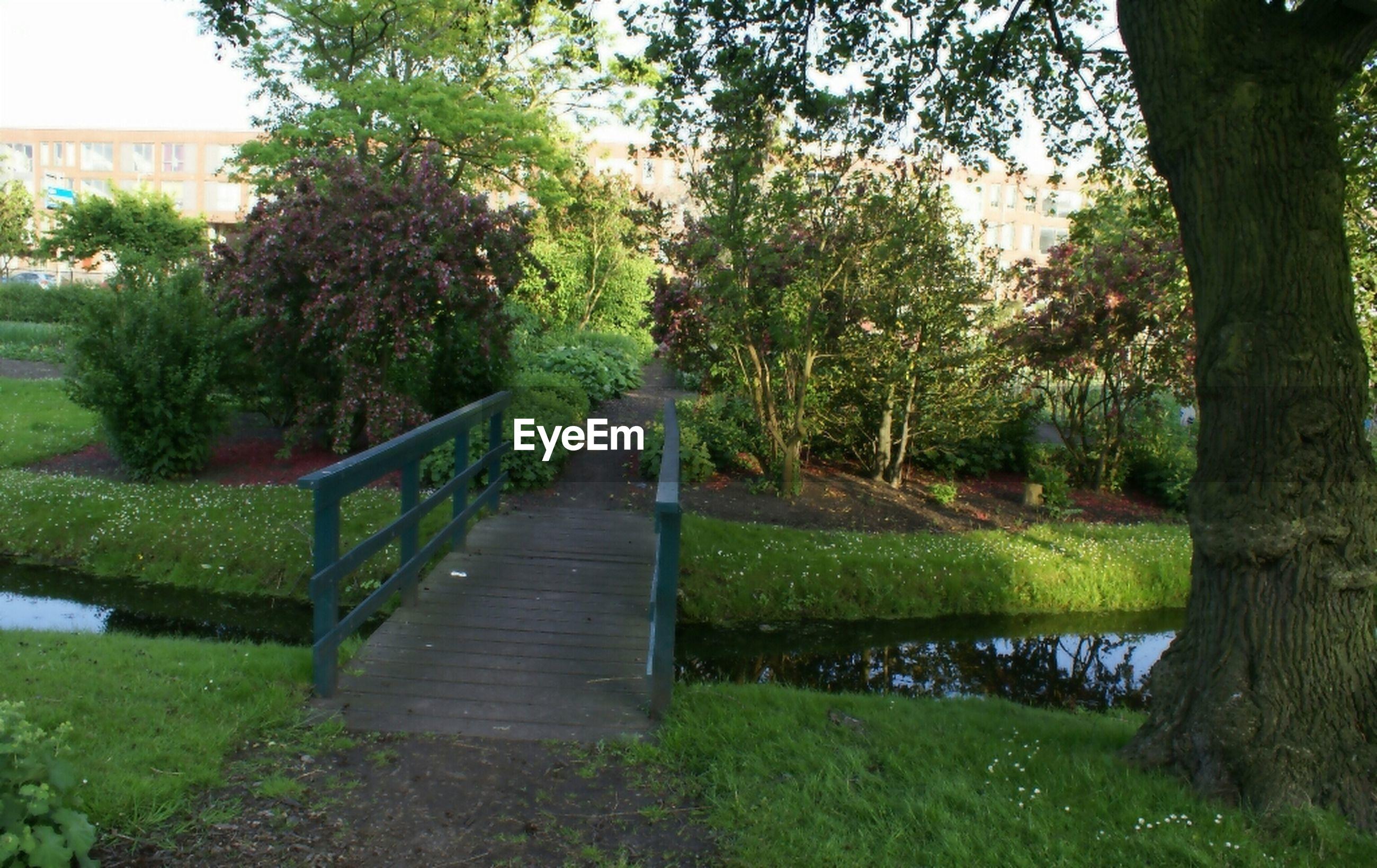 Wooden footbridge over stream in park