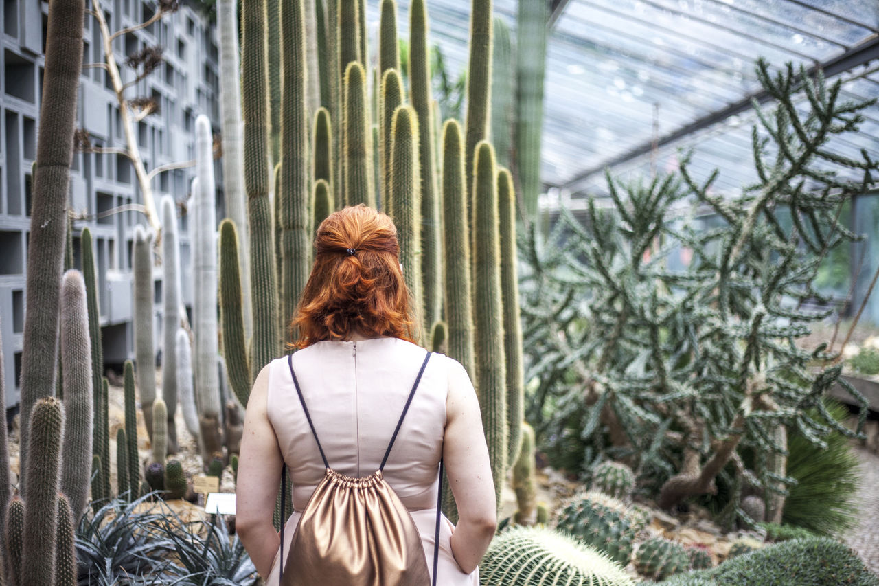 Rear View Of Redhead Woman In Greenhouse