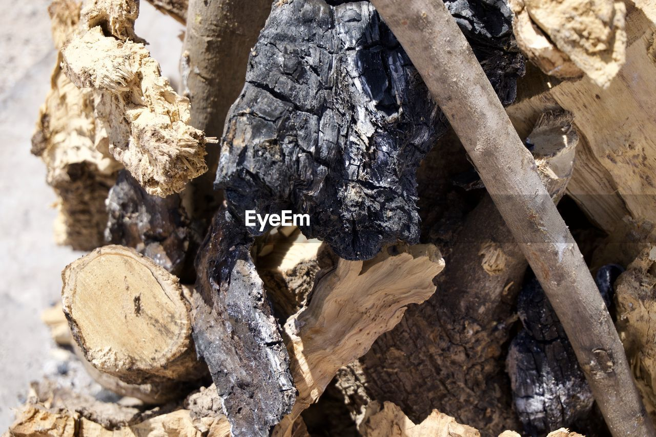 nature, no people, wood - material, textured, day, full frame, rock, solid, close-up, tree, rock - object, backgrounds, outdoors, wood, log, high angle view, sunlight, rough, timber, pattern