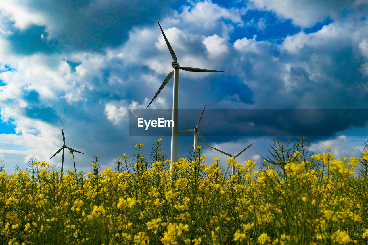 fuel and power generation, wind turbine, turbine, renewable energy, alternative energy, environmental conservation, wind power, flower, sky, environment, beauty in nature, flowering plant, cloud - sky, yellow, rural scene, field, land, landscape, agriculture, nature, no people, outdoors, sustainable resources