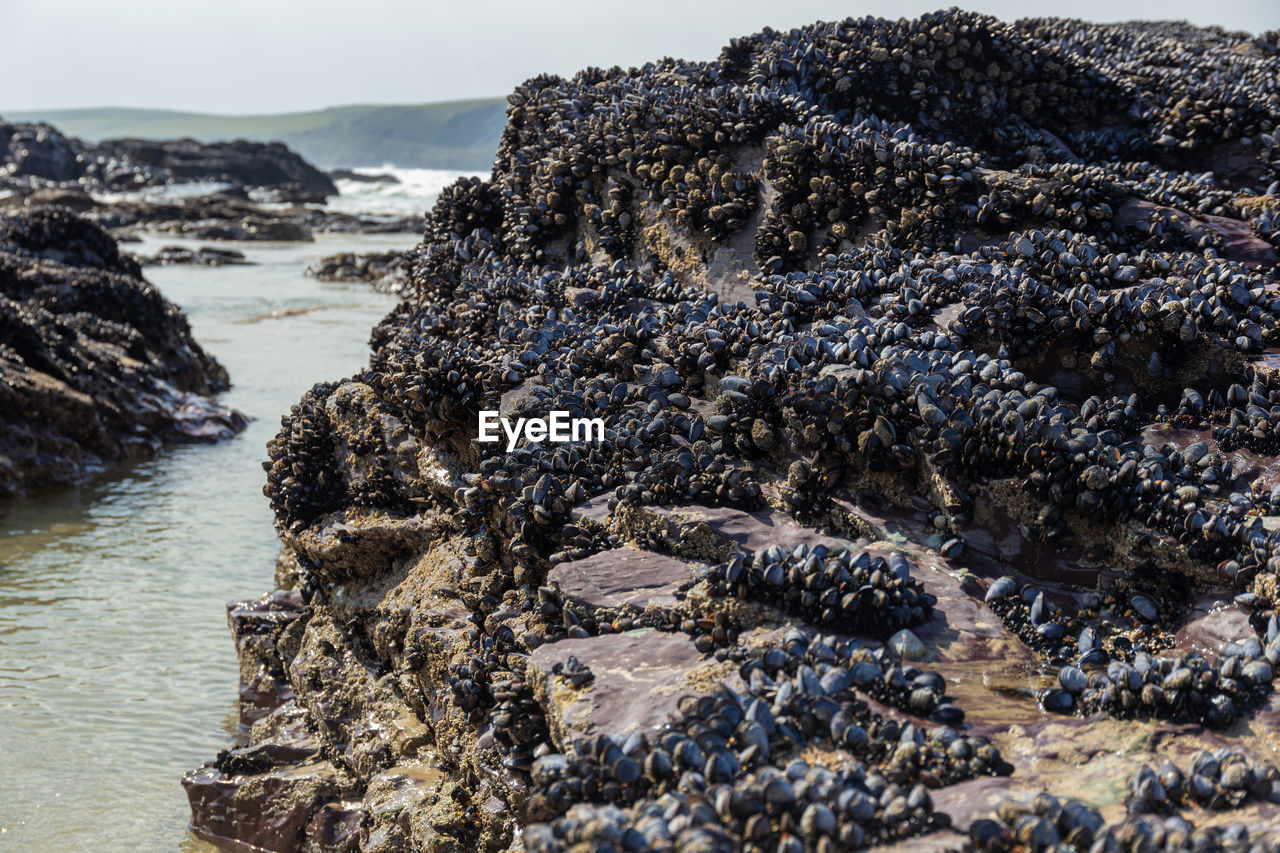 VIEW OF ROCK FORMATIONS ON SHORE
