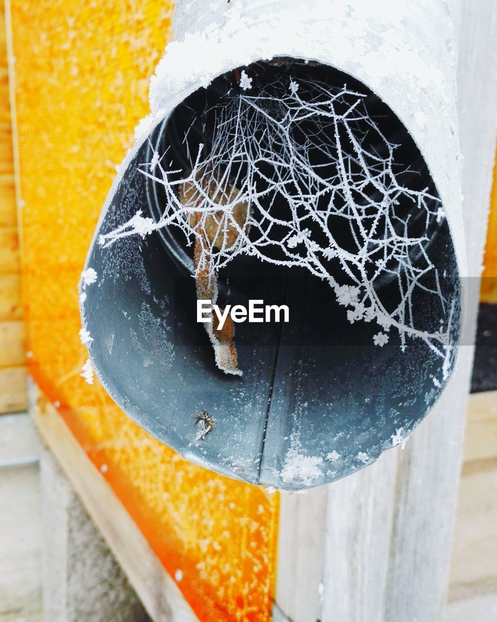 close-up, no people, metal, day, outdoors, yellow, focus on foreground, architecture, white color, wall - building feature, winter, built structure, wood - material, damaged, cold temperature, spider web, rusty, abandoned, pattern