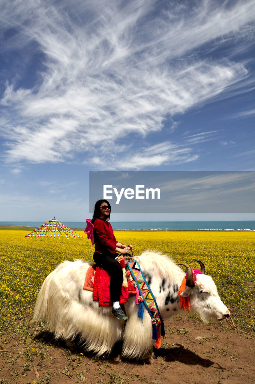 Side View Of Young Woman Riding Yak On Field Against Sky