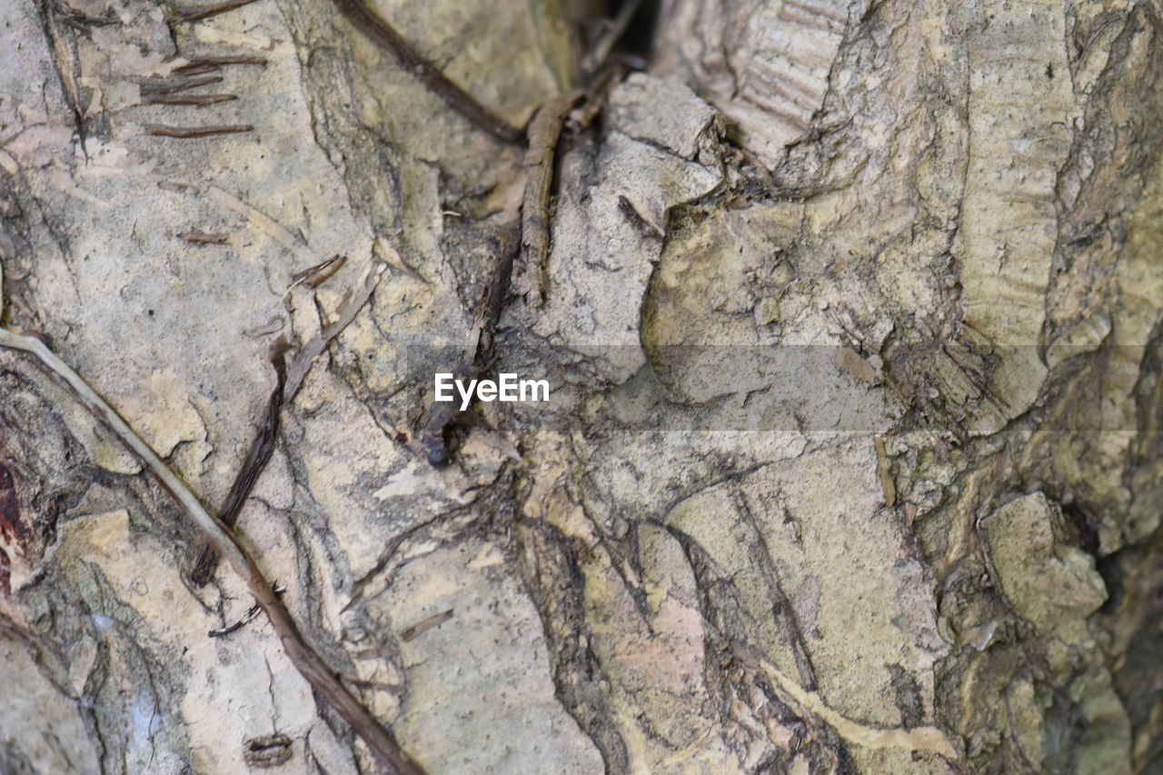 backgrounds, textured, full frame, nature, close-up, no people, pattern, rock - object, day, outdoors