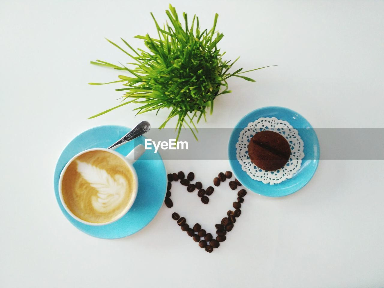 Directly Above Shot Of Coffee With Plant On White Table