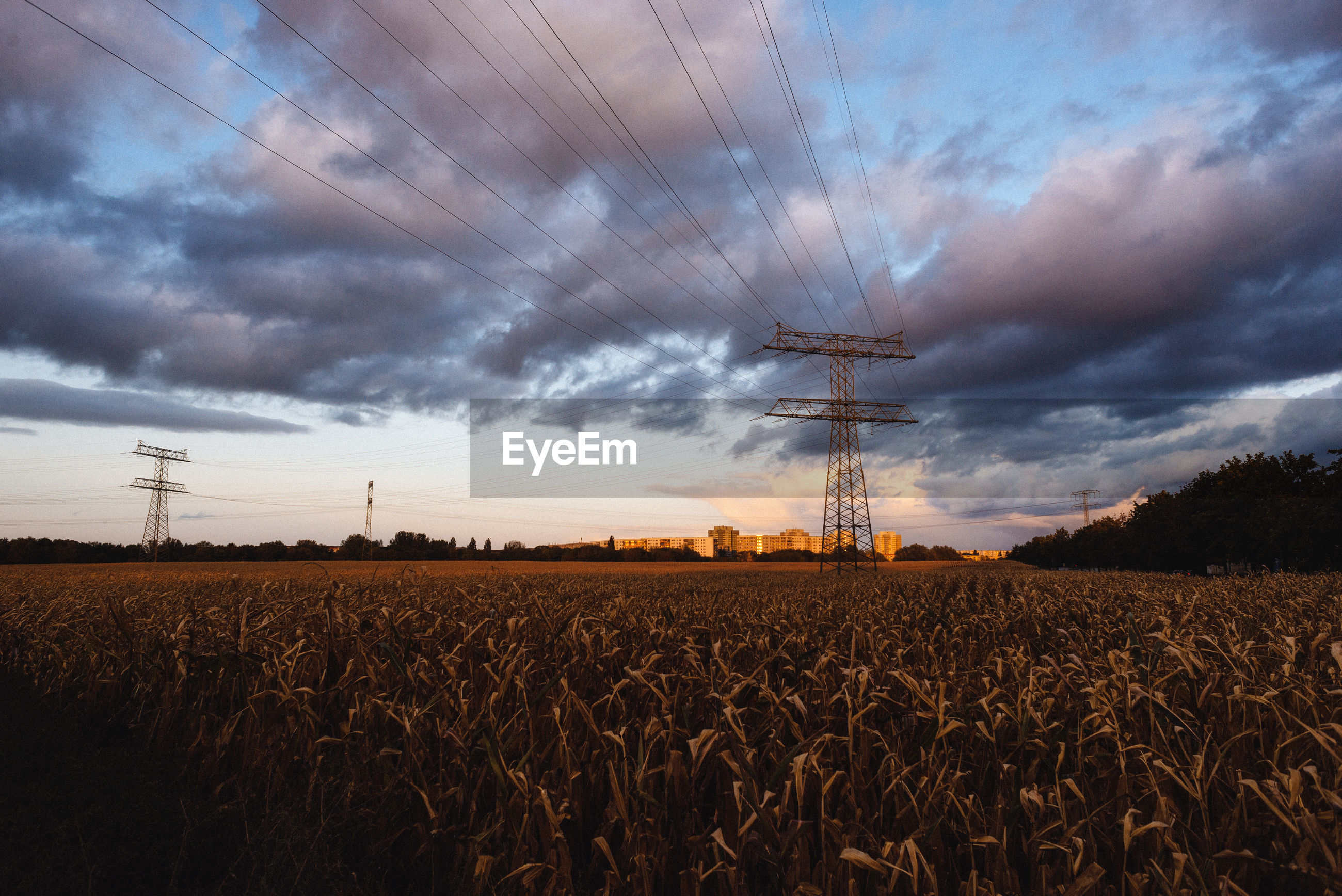 sky, cloud, landscape, electricity, environment, agriculture, power generation, field, horizon, land, technology, nature, power supply, electricity pylon, rural scene, crop, cable, sunset, plant, power line, cereal plant, beauty in nature, scenics - nature, no people, growth, sunlight, evening, dusk, dramatic sky, farm, outdoors, tranquility, business finance and industry, tree, cloudscape, tranquil scene, barley, wheat