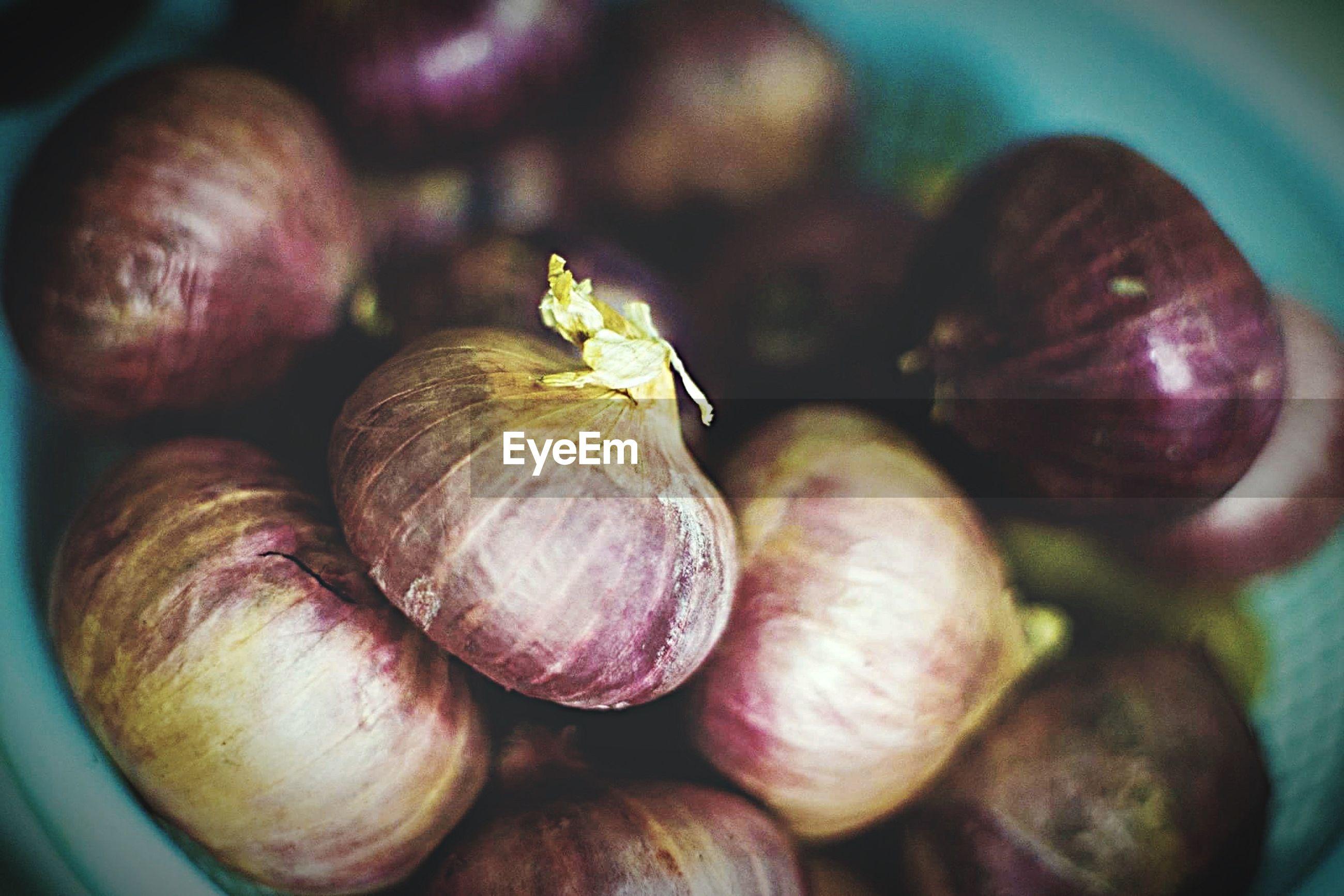 Close-up of spanish onions