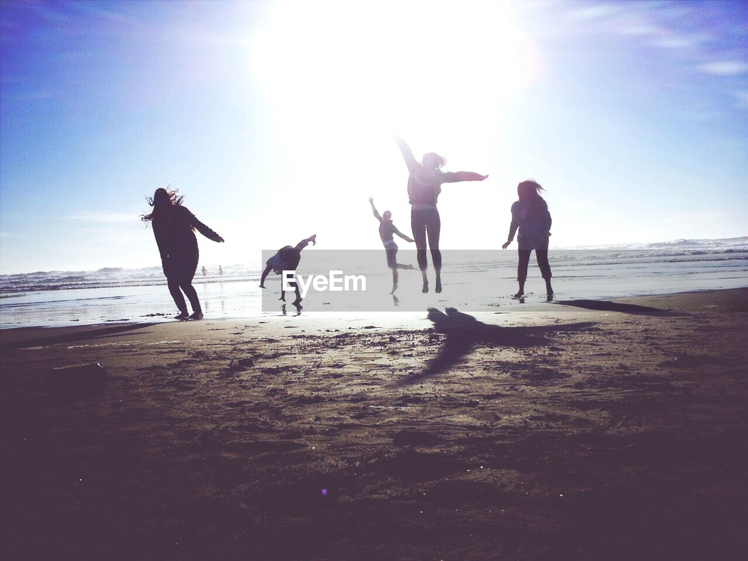 beach, sea, shore, animal themes, men, sky, water, sand, horizon over water, lifestyles, sunlight, leisure activity, walking, full length, domestic animals, person, dog, togetherness, silhouette