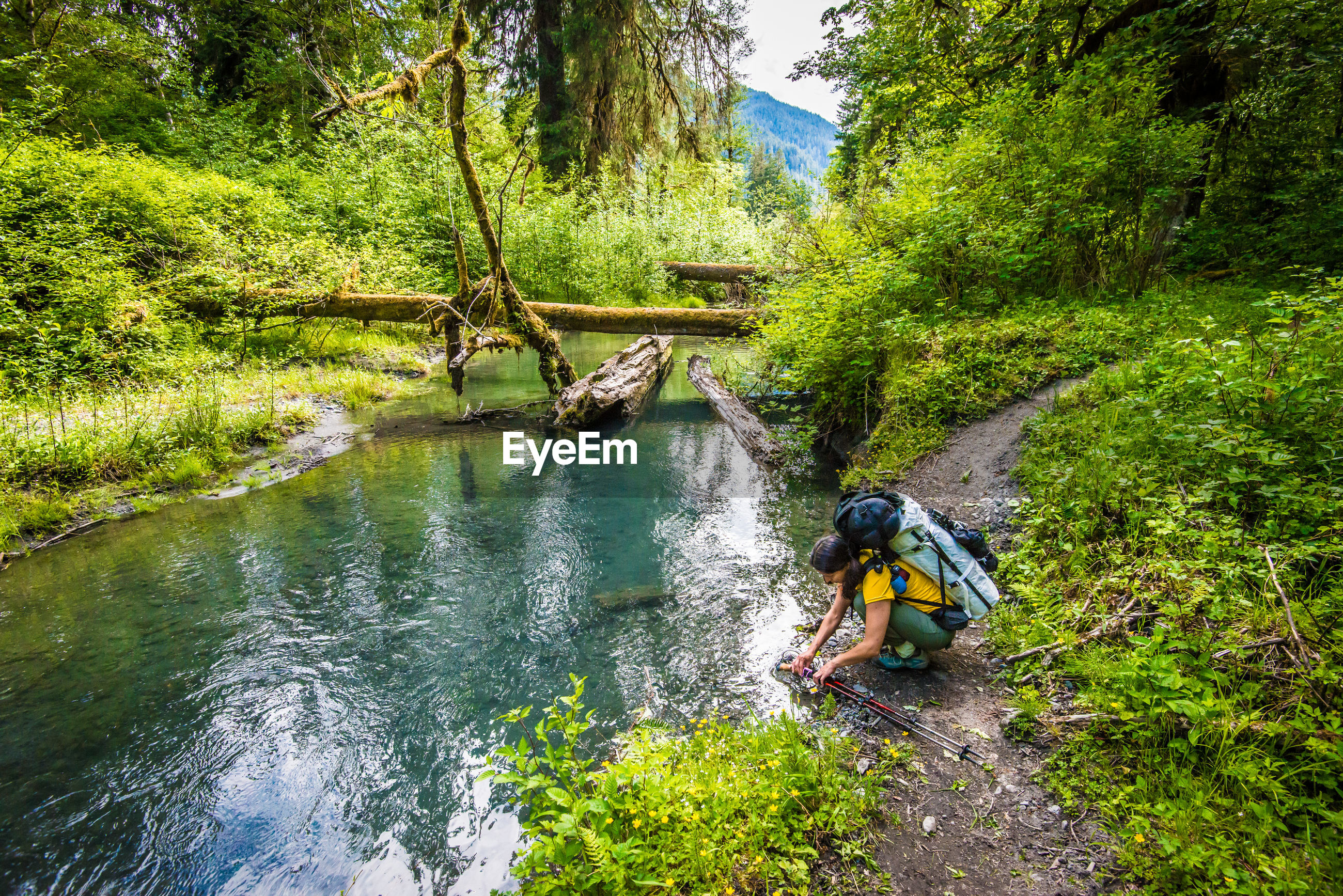 MAN SURFING ON RIVER IN FOREST
