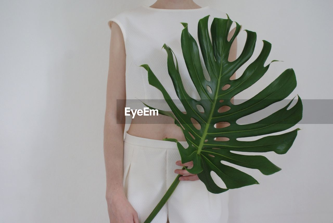 Midsection Of Woman Holding Green Leaf Against White Background