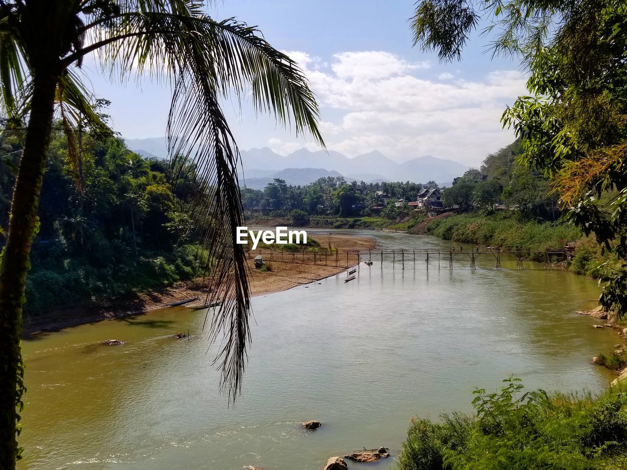 water, tree, plant, sky, palm tree, nature, beauty in nature, tranquility, tropical climate, tranquil scene, scenics - nature, growth, day, mountain, no people, land, cloud - sky, outdoors, river, coconut palm tree