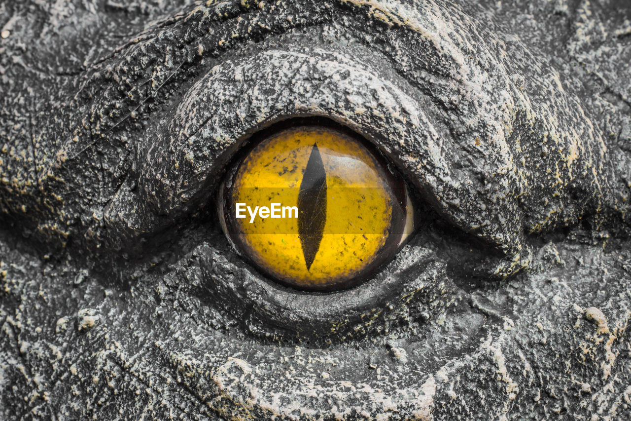 close-up, no people, yellow, animal themes, textured, day, animal, outdoors, solid, sign, rock, animal body part, backgrounds, rock - object, black color, rough, communication, one animal, full frame, nature