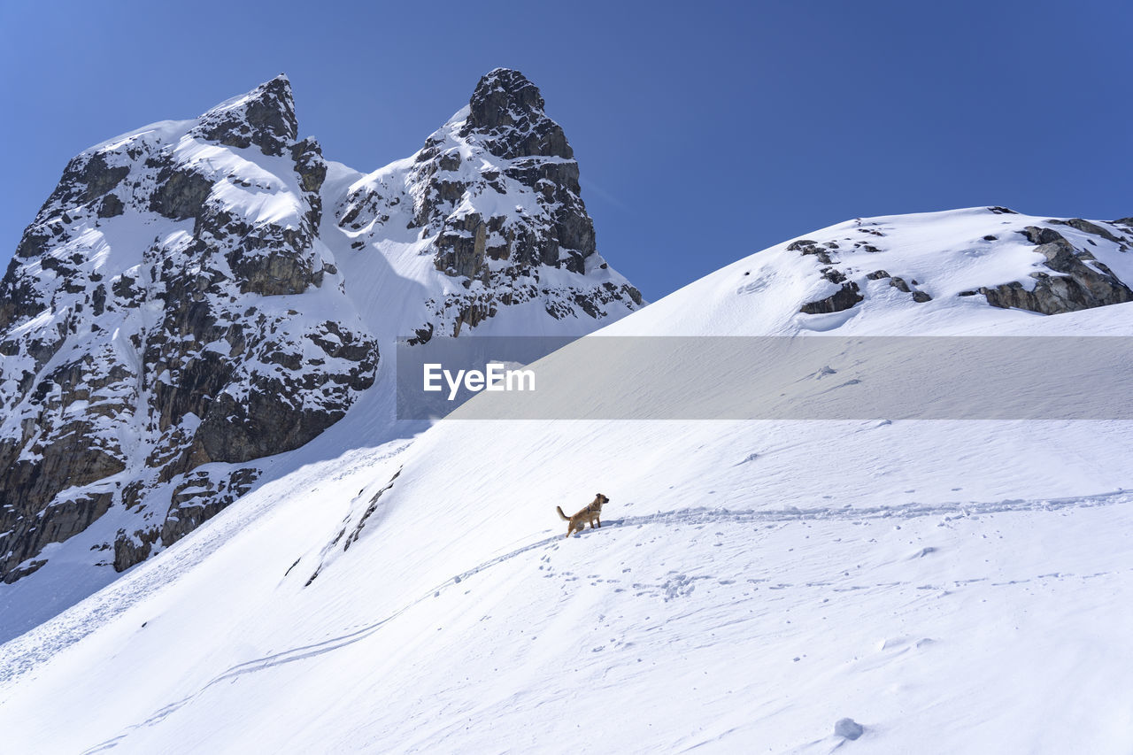 snow, cold temperature, winter, mountain, scenics - nature, snowcapped mountain, beauty in nature, sky, tranquil scene, white color, tranquility, non-urban scene, day, mountain range, nature, clear sky, covering, environment, deep snow, outdoors, extreme weather, mountain peak, formation