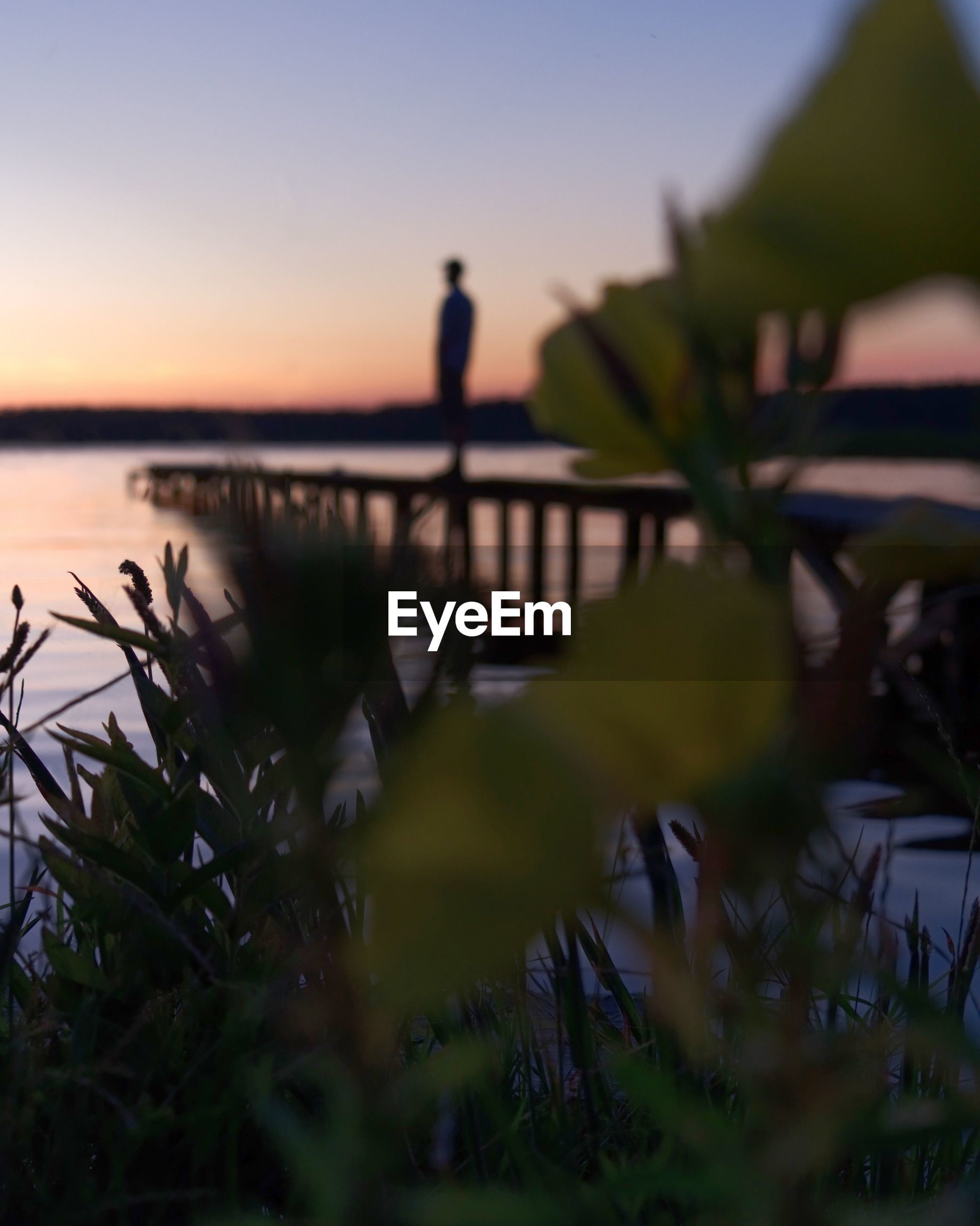 sky, sunset, beauty in nature, selective focus, plant, nature, silhouette, water, real people, scenics - nature, leisure activity, one person, lifestyles, tranquility, sea, tranquil scene, standing, outdoors
