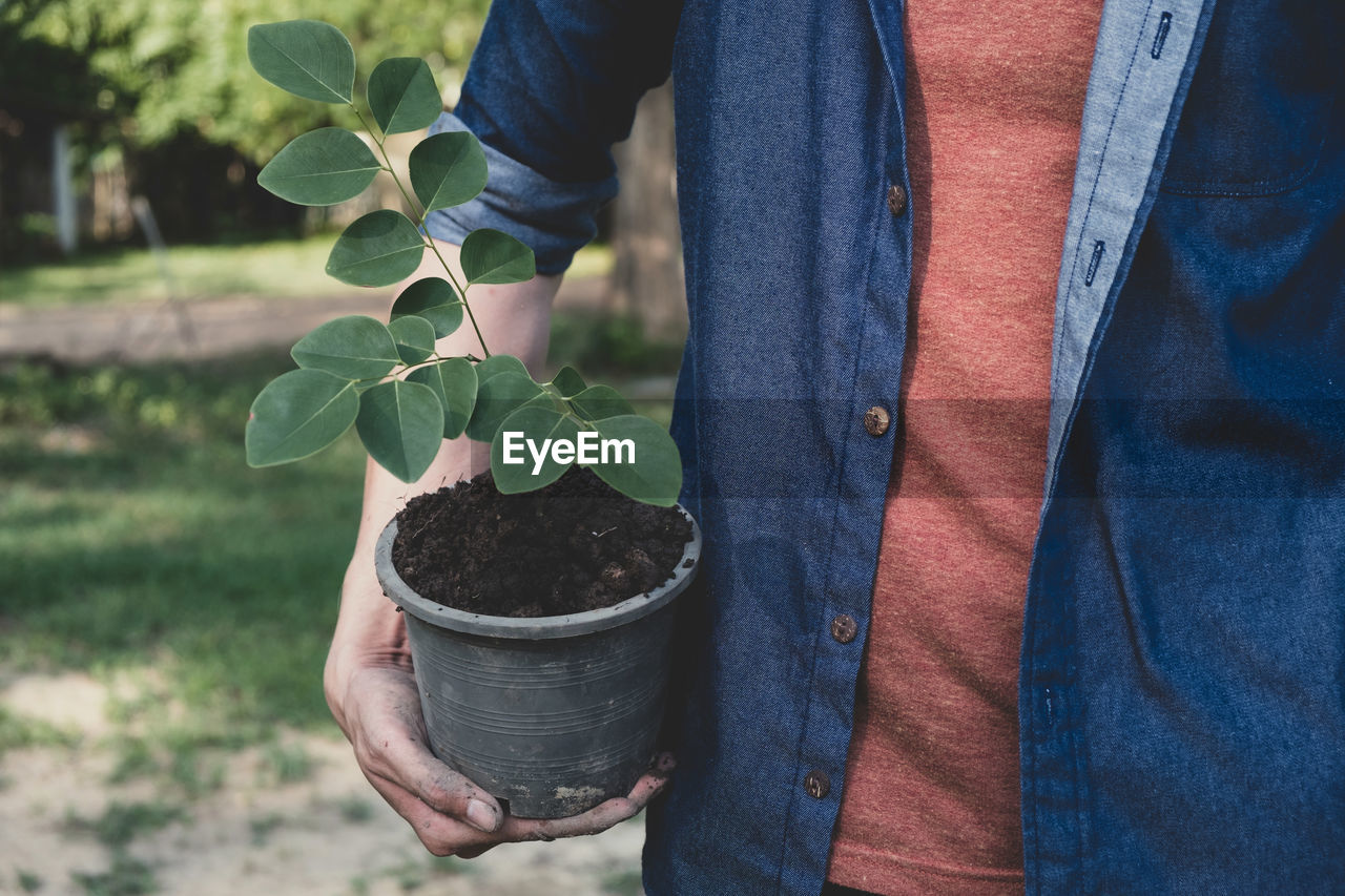 midsection, one person, holding, growth, real people, plant, leaf, hand, human hand, lifestyles, plant part, nature, human body part, men, day, casual clothing, standing, adult, focus on foreground, outdoors, gardening, jeans, planting