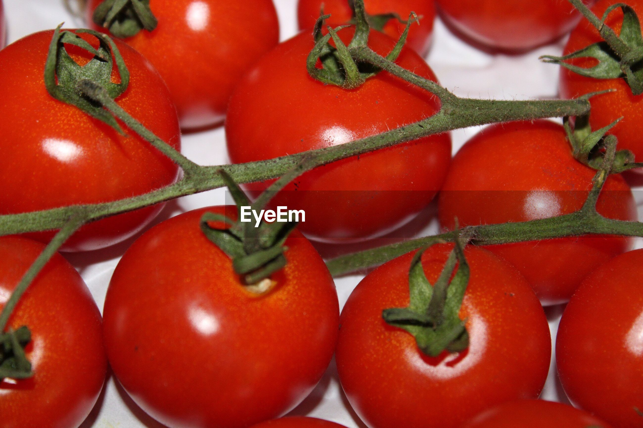 red, food, healthy eating, freshness, vegetable, food and drink, tomato, close-up, no people, nature